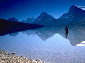 flyfishing_bow_lake