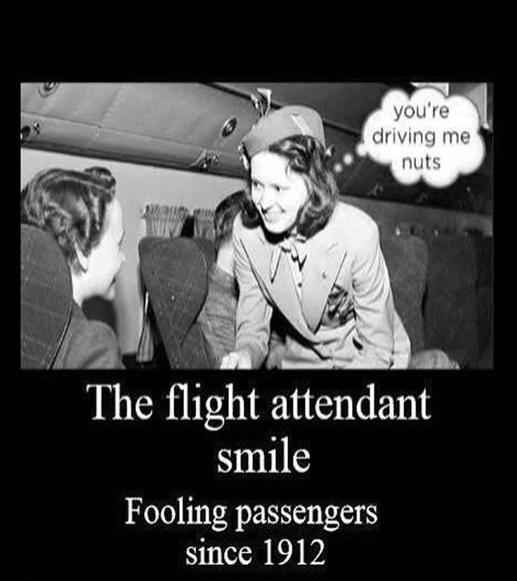 flight attendant humour