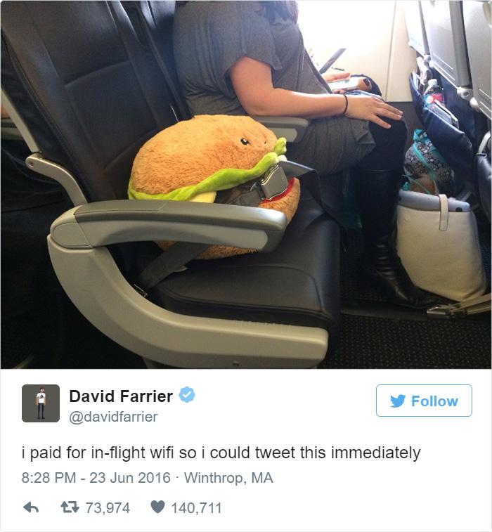 flight companion